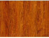 强化地板-精品8802