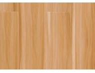 强化地板-精品8806