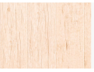 强化地板-精品8803